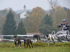 Barz Open - Erste Flugstunden im Herbst ;)