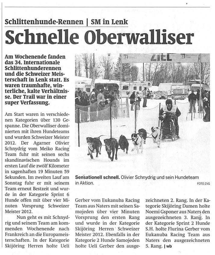 Zeitungsartikel WB 2012